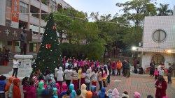 安南區打卡新地標,安順國小聖誕樹點燈啟用