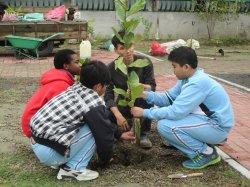 和順國中參與國際珍古德基金會根與芽計畫-綠拇指活動