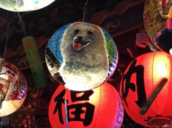 光華附設國中部 彩繪花燈榮獲第一、三名