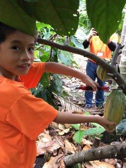 轉載自由時報--偏鄉小學童訪可可園、製作巧克力:好幸福!