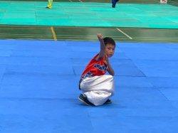 吉貝耍國小--108年臺南市市長盃武術錦標賽表現優異