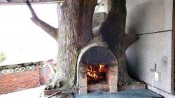 HOT~HOT~HOT~樹人國小窰烤披薩火熱出爐了