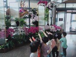 左鎮化石園區 滿足學童好奇心/館校合一提供學童具美感的學習環境