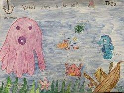 「我以後要當船長」 台南用創意教出海洋子民