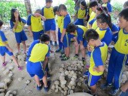 戶外教育之探索大自然