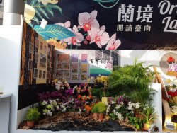 2019臺灣國際蘭展--小型景觀佈置看得到樹人國小